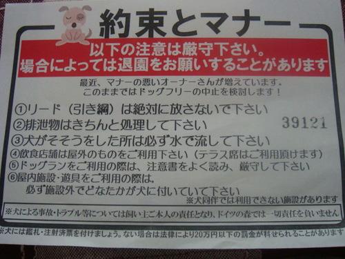 DSC06835.JPG